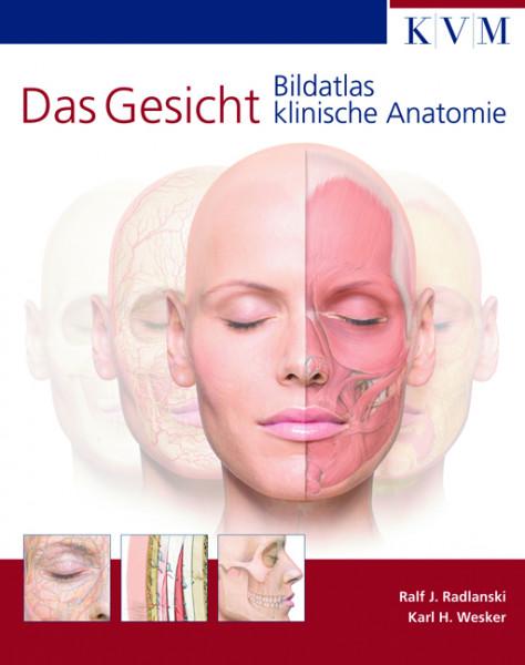 Bildatlas Das Gesicht - klinische Anatomie 2. Auflage, Autoren Ralf J. Radlanski + Karl H. Wesker -